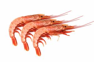 creveti-gambon-grill-1